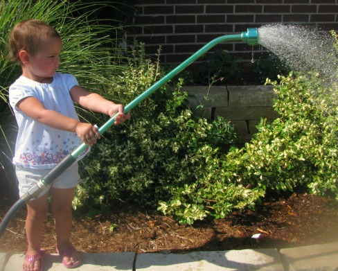 heat-killing-your-plants-tips-for-watering-your-garden