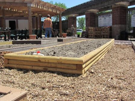 Flowers Blog » building raised flower beds landscape timbers
