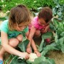 kids-in-the-garden-i-cant-keep-them-out