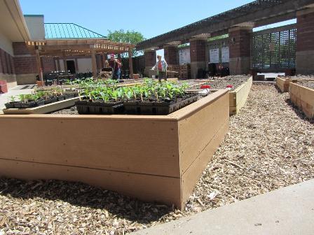 2-garden-in-box