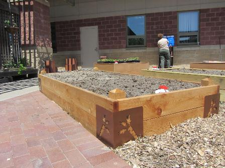 learning-garden-7-raised-beds