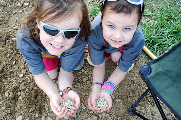 holding seeds