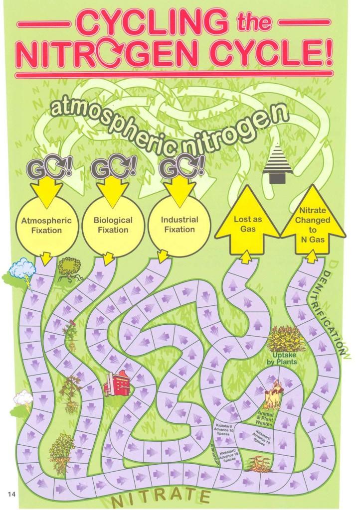 Nitrogen Cycle Board
